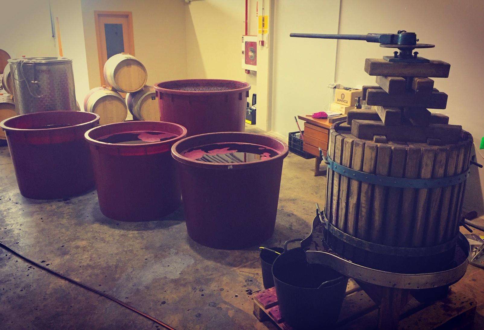 El Vino se hace solo